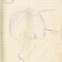 F. 29r. Dibujos
